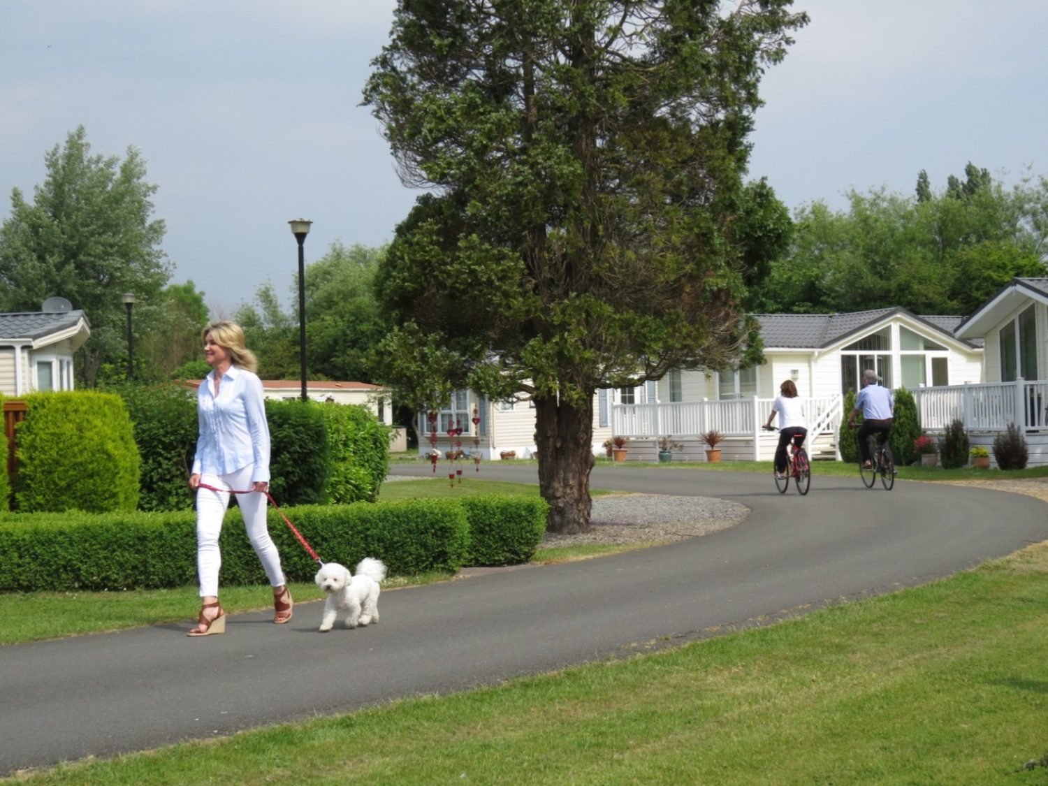 a lady takes her dog for a walk